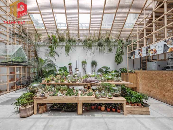 Tropical Forest / Tayone Design Studio